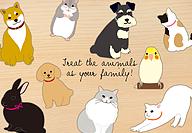 ANIMAL DIECUTイメージ